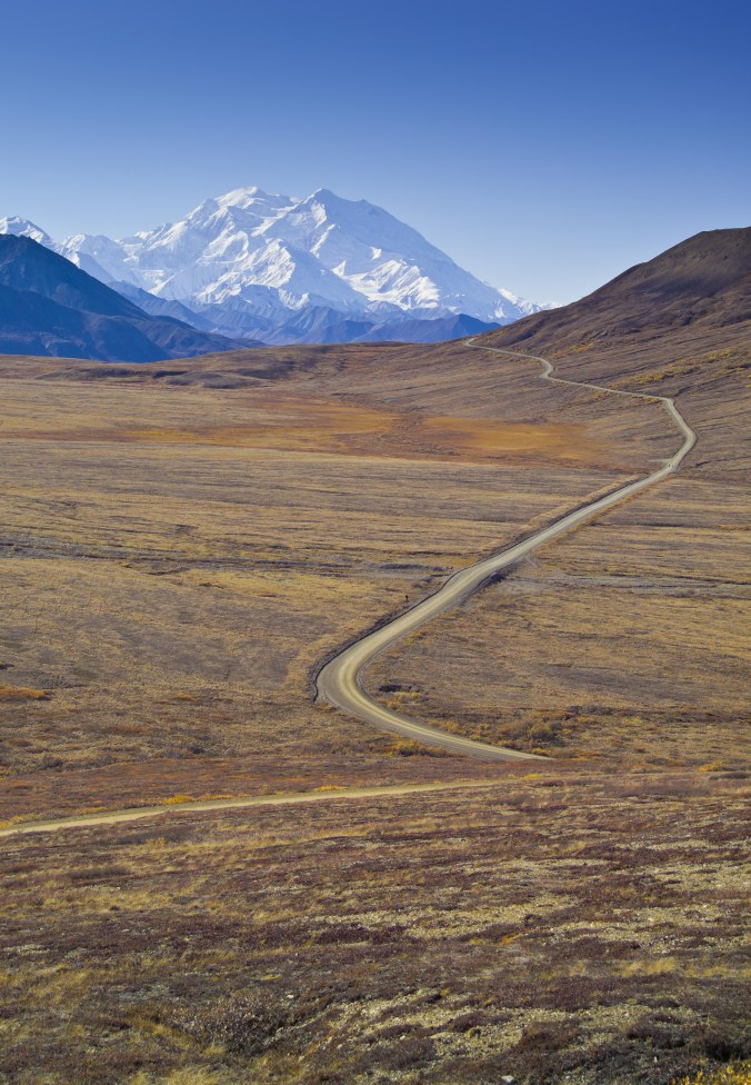 Road to Denali.jpg